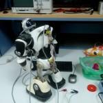 Poursuite des efforts de restauration du RoboSapien